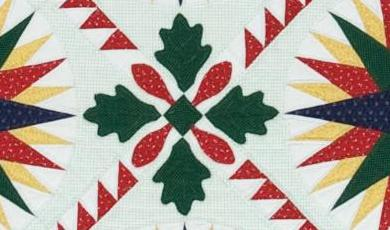 Mariner's Compass Quilt Photo